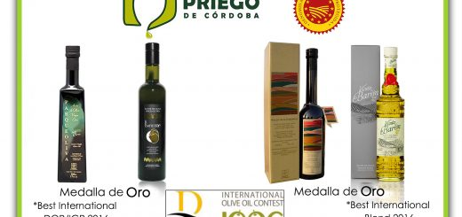 Premio- Domina Intert
